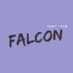 Falcon отзывы о прогнозах и ставках каппера в телеграмм